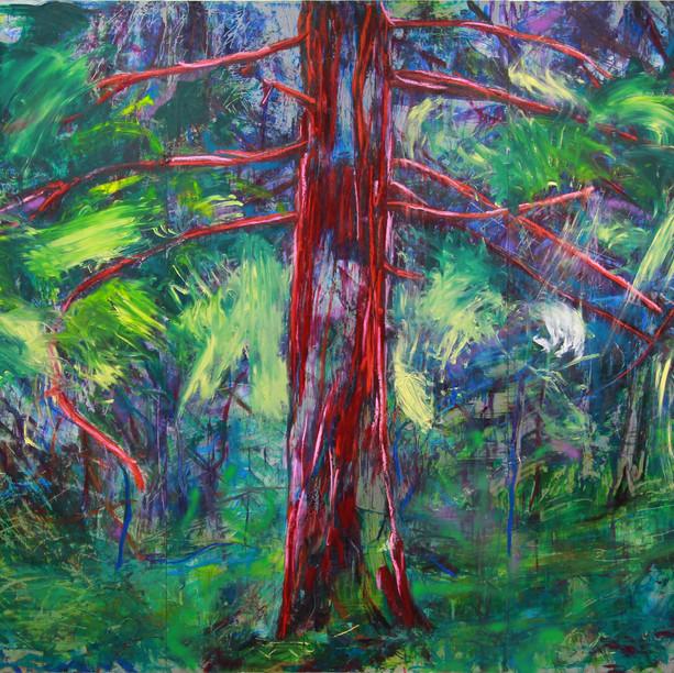 Metsä kuiskaa (Forest Whispers), 2018
