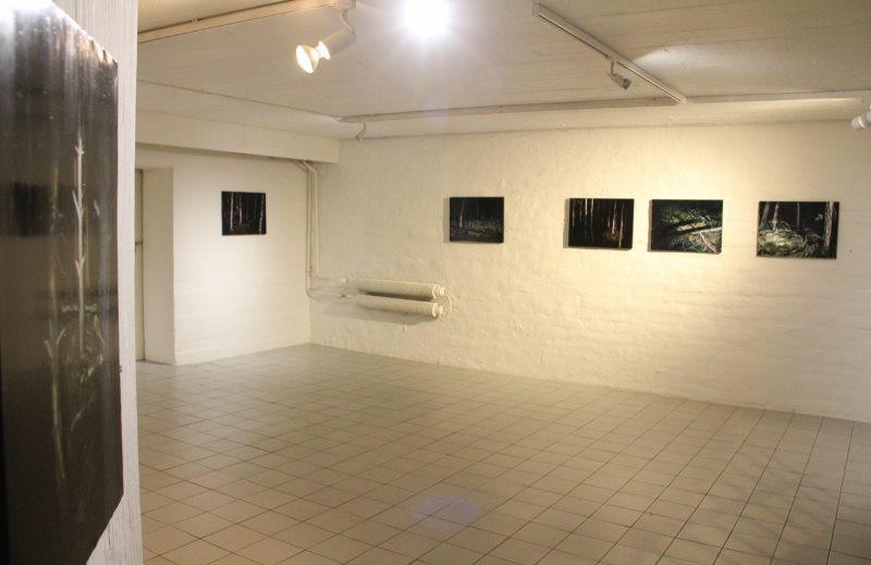 Auran galleria 2016