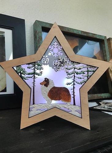 Lighted Christmas Star