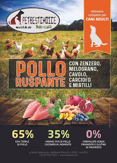 PETBESTCHOICE Adult Pollo Ruspante,Zenzero,Melograno,Cavolo, Carciofo e Mirtillo