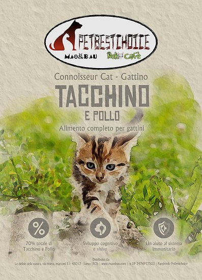 PETBESTCHOICE  Grainfree Kitten  Tacchino e Pollo 70%