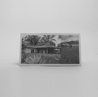 48, Photograph
