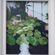 Water Lilies at Kew - oil