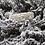Thumbnail: Silver Hoarfrost band