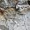Thumbnail: Long Minimalist studs