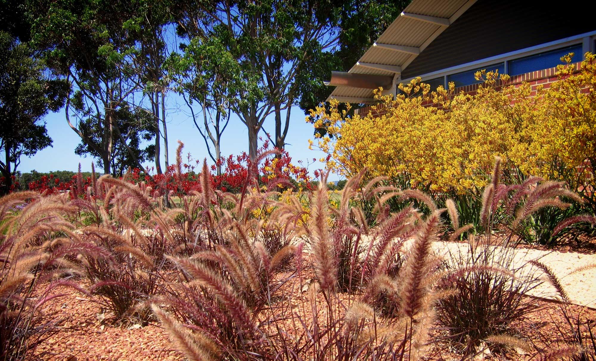 Landscape_L3_GS_Grammar_4