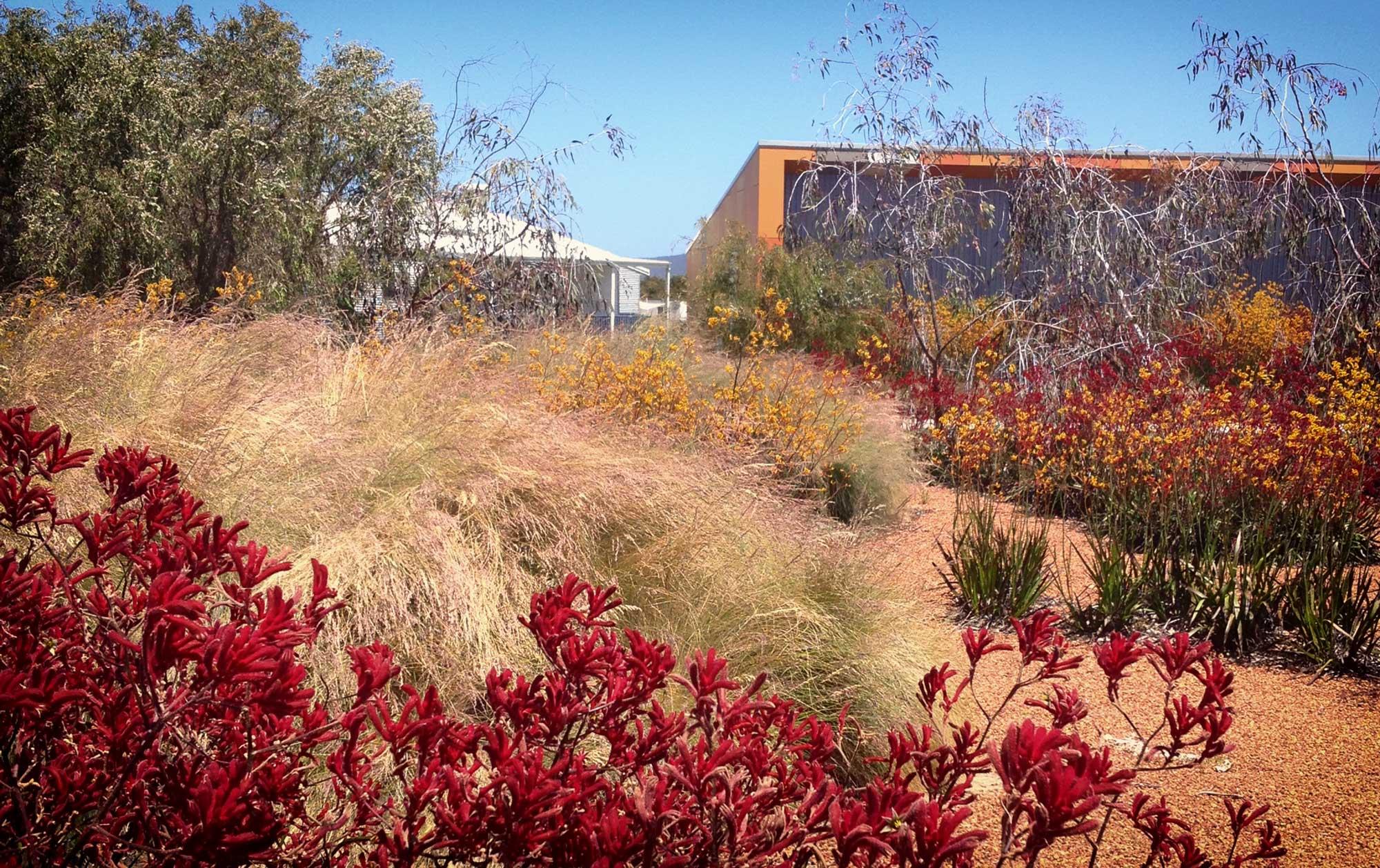 Landscape_L3_GS_Grammar_6