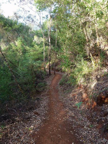 Bibulmun-Track_Warren-River.jpg