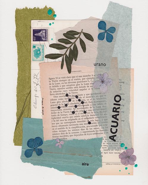Print Collage ZODIACO / Acuario