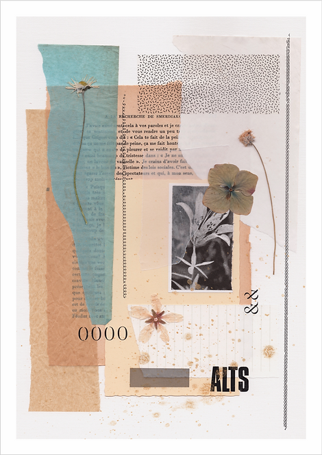 "PRINT COLLAGE ""ALTS"""