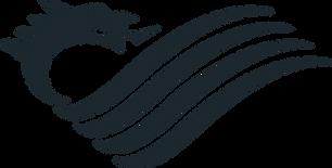 NAFW-Dragon-Slate1.png