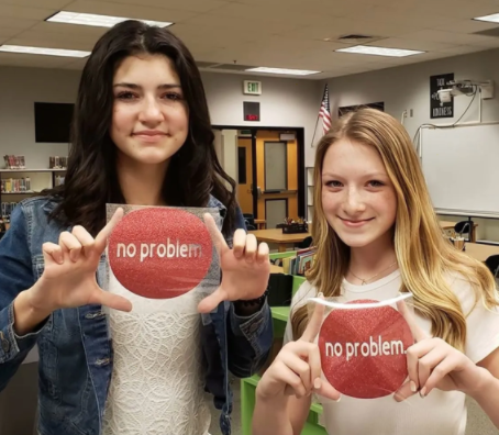 NoProblem.Period: Free Menstrual Products in Women's Restrooms