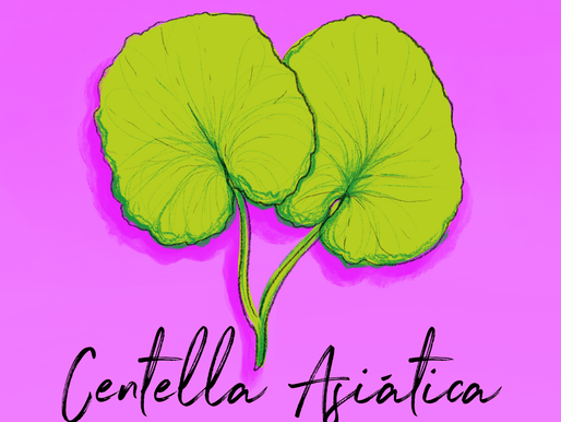 Ingredient Spot-light: Centella Asiática