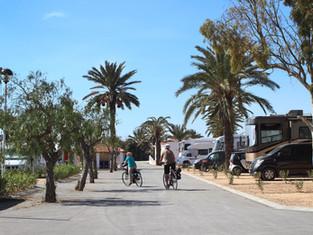 Alquiler Bicicletas Camping