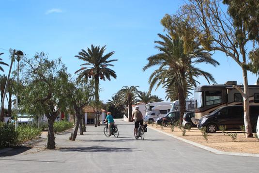 Leisure Walks Bicycle Beach Camping