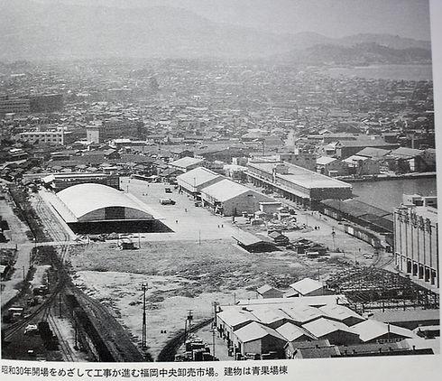 昭和30年開場を目指して工事が進む福岡中央卸売市場市場.jpg