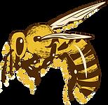 BEE 02.png