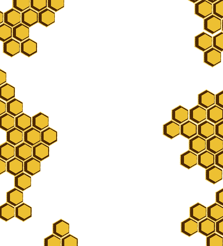 HONEY COMBS 2.png