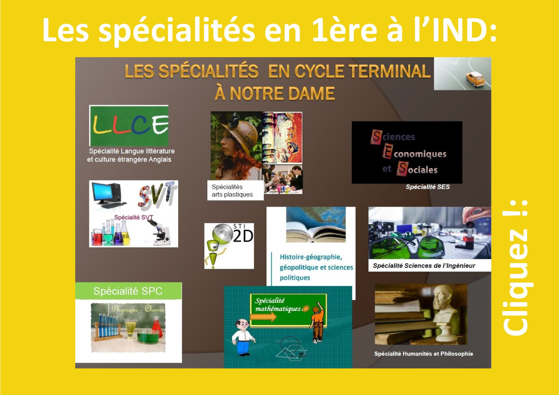 2019_08_12  Les spécialités en 1ère.jpg