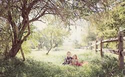 kidstree2.jpg