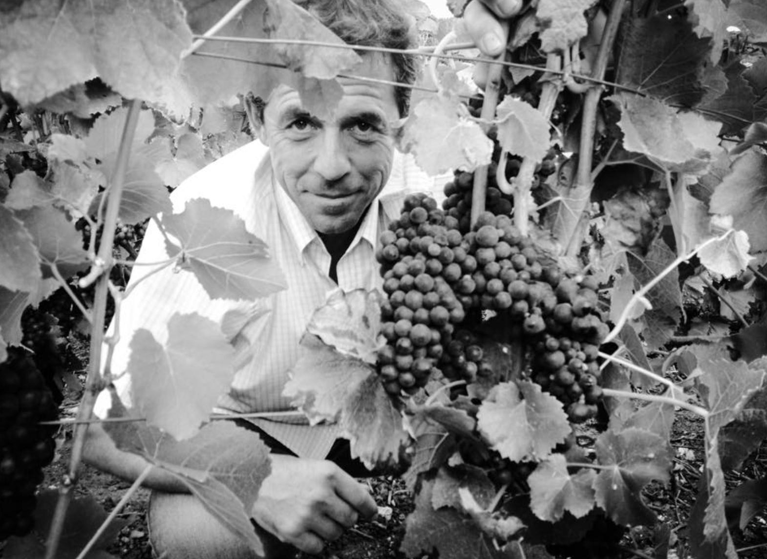 Hervé_GOBILLARD,_viticulteur_passionné_par_la_vigne_et_le_vin.