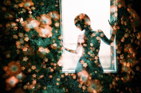追憶の窓辺