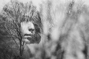 木枯らしの肖像