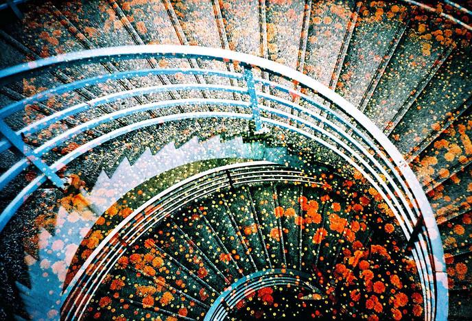spiral & floral