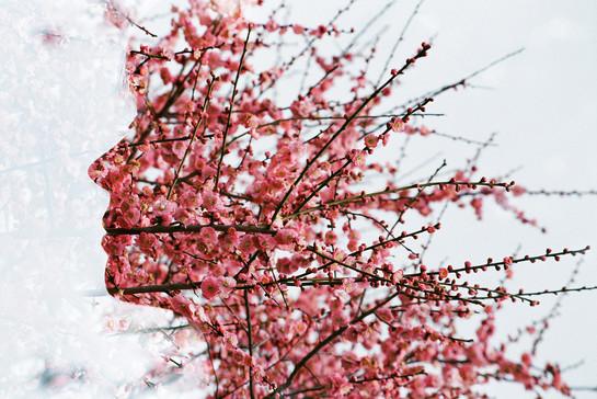 早春のシルエット