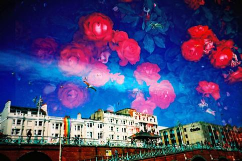 Summer in Brighton