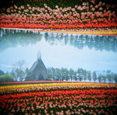 spring utopia