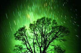 Wishing upon stars