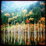 秋の御嶽自然湖