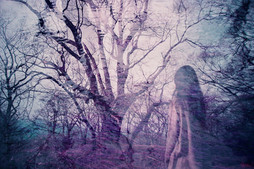冥い森 -dystopia-