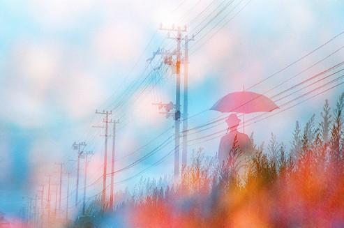 雨の日の残像