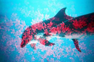皐月の舞 -aquarium in bloom-