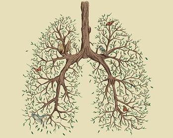 reverse tree.jpg
