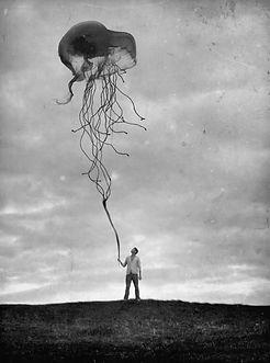 meduza jako drak.jpg