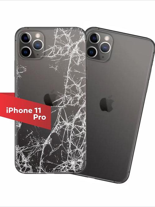 TAMPA  IPHONE 11 PRO MAX