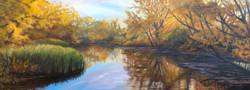 Sertoma Pond
