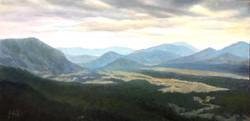 CO Mt View