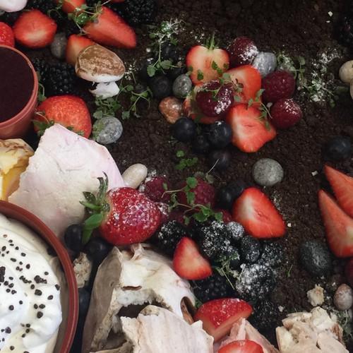 Edible strawberry garden