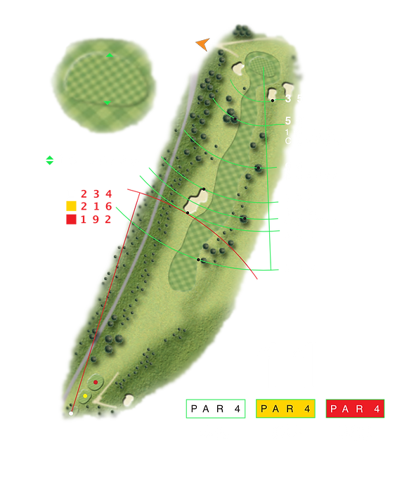 hole 11 new.png