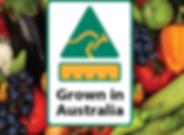 Grown In Australia - fruit background-01