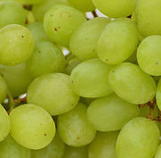 grapes-1281916_1920.jpg
