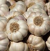 garlic-2097759_1920.jpg