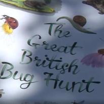 BBC One coverage of the Great British Bu