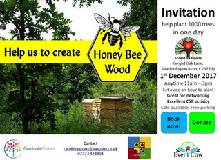 Plant 1000 trees in one day! Help Forest of Hearts to create Honey Bee Wood, near Stratford Upon Avo