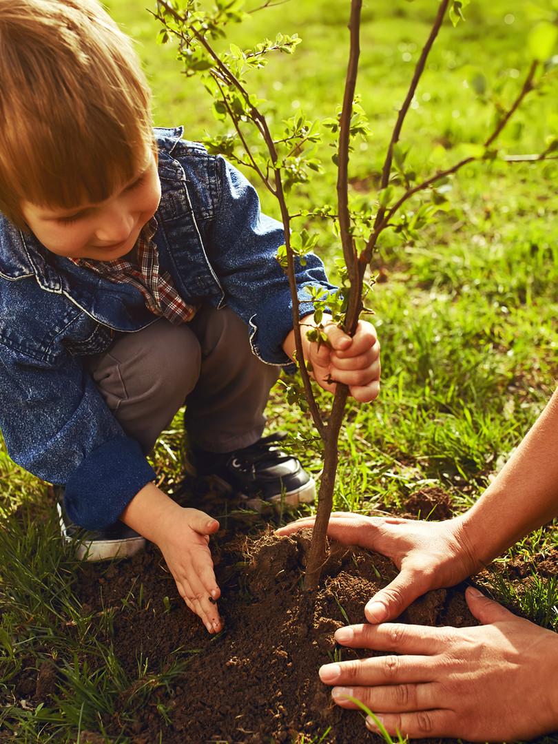 Children Tree Planting.jpeg