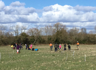 Stratford School Sustainability Programme - Tree Planting with Children from Welcombe Hills School